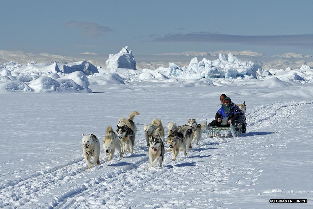 La Balade du Jour : Groenland, les Icebergs en traîneau ! Par Tobias Friederich 179-tb11