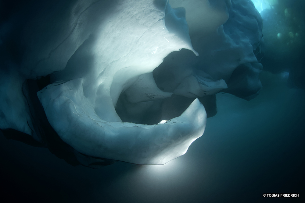 La Balade du Jour : Groenland, les Icebergs en traîneau ! Par Tobias Friederich 184-tb9