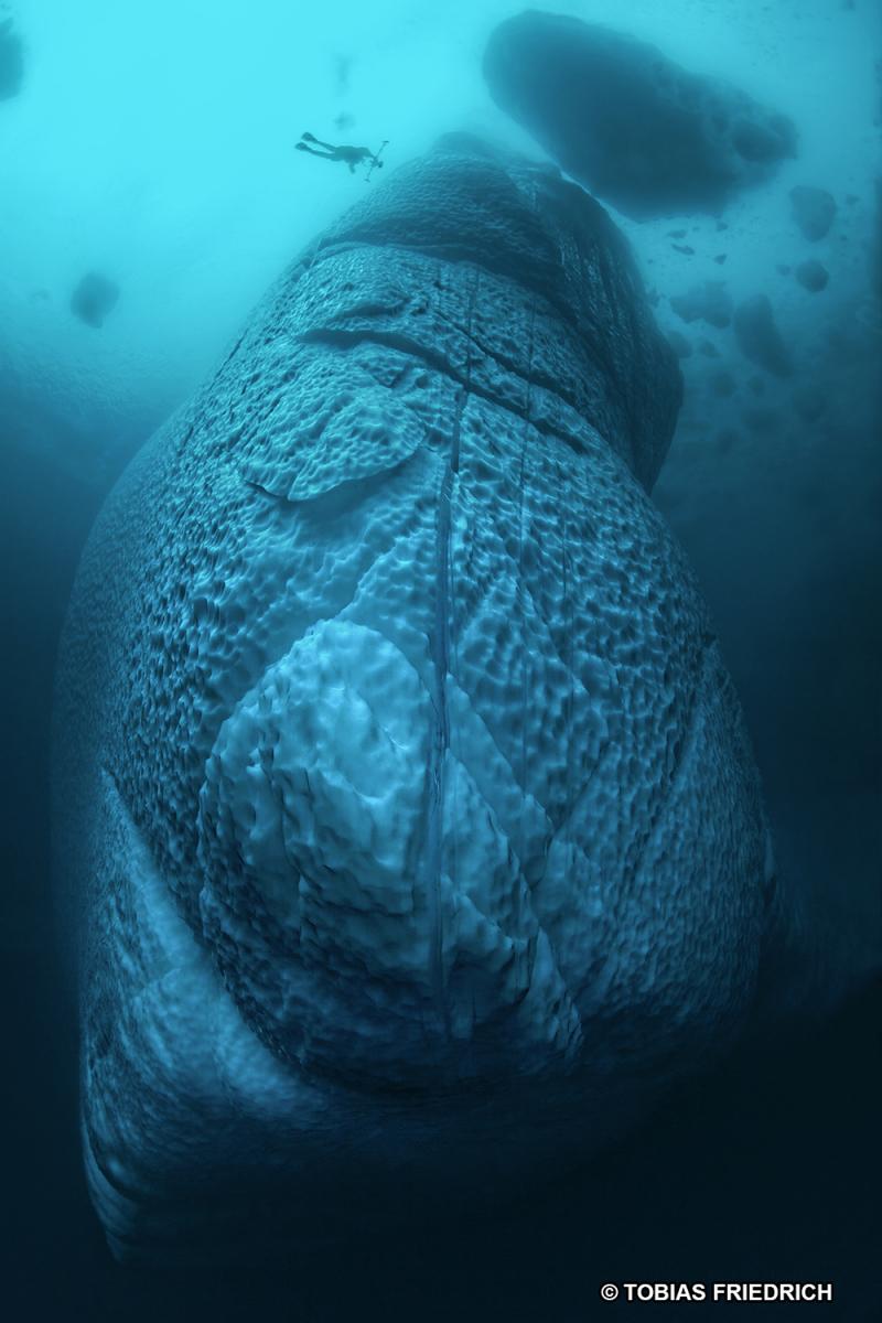 La Balade du Jour : Groenland, les Icebergs en traîneau ! Par Tobias Friederich 189-tb16