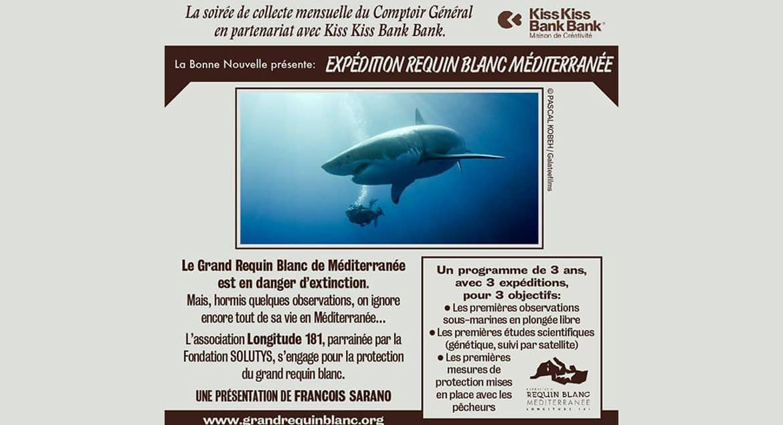 soiree-expedition-requin-blanc-de-mediterranee